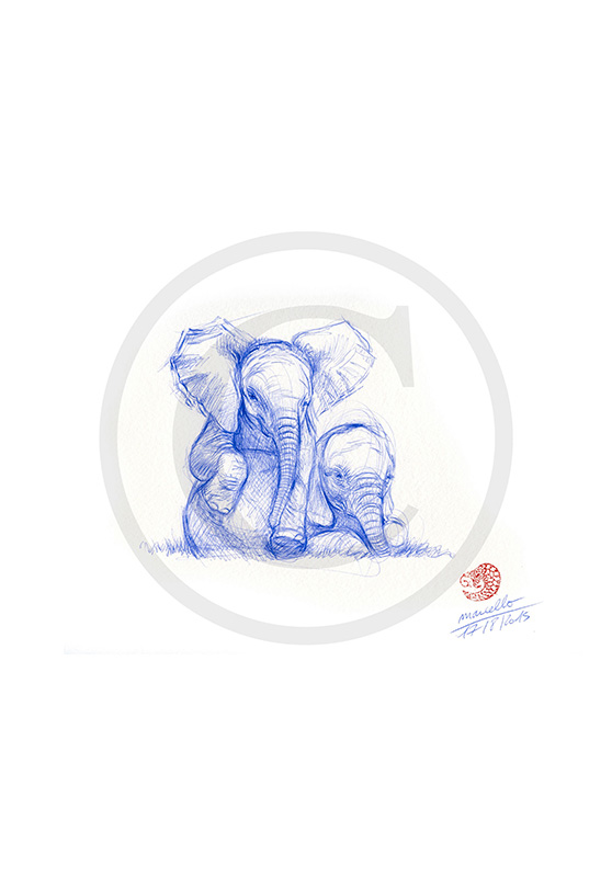 Marcello-art: Ballpoint pen drawing 315 - Baby elephant