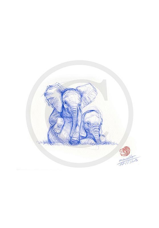 Marcello-art : Dessins au Bic 315 - Éléphanteau