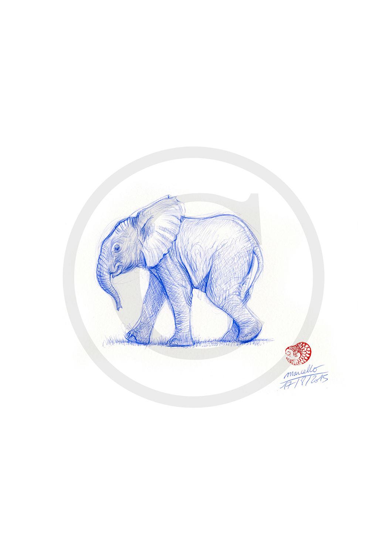 Marcello-art: Ballpoint pen drawing 317 - Baby elephant