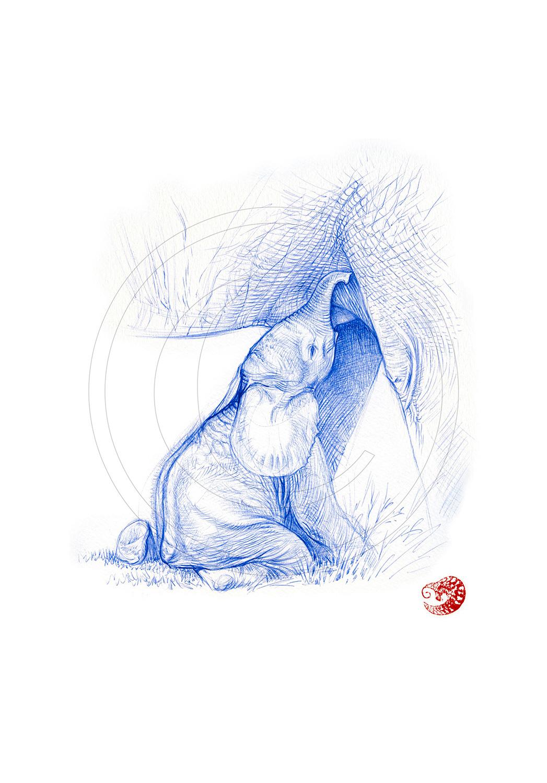 Marcello-art: Ballpoint pen drawing 329 - Baby elephant