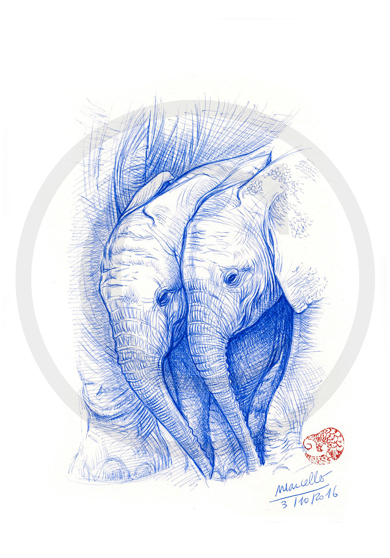 Marcello-art: Ballpoint pen drawing 354 - Baby elephant