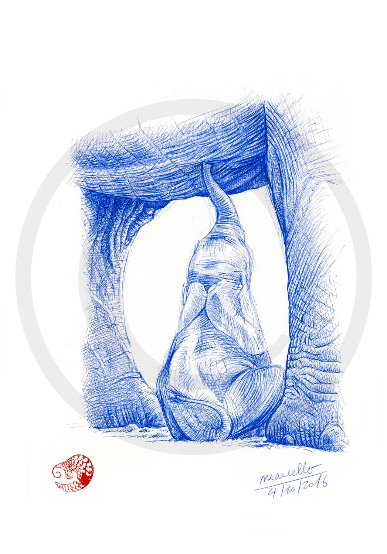 Marcello-art: Ballpoint pen drawing 355 - Baby elephant