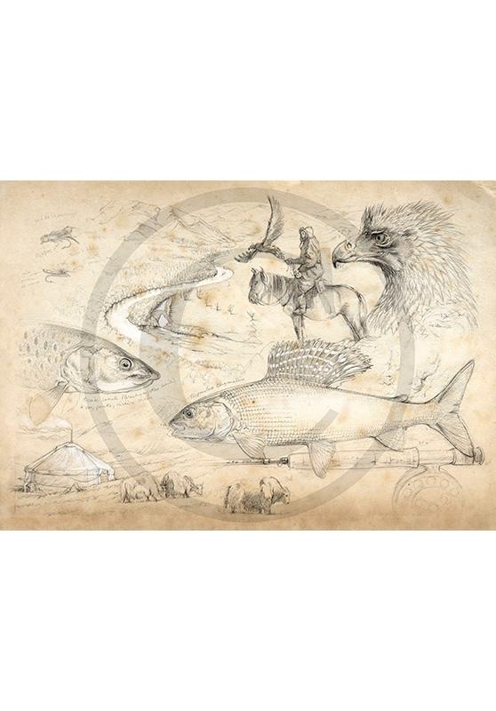 Marcello-art : Faune aquatique 11 - Mongolie pêche à la mouche