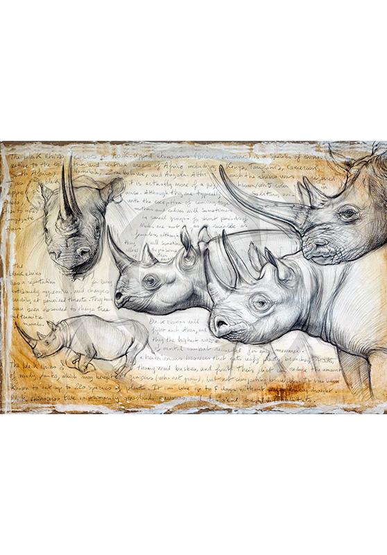 Marcello-art: African Wildlife 176 - Rhino 03