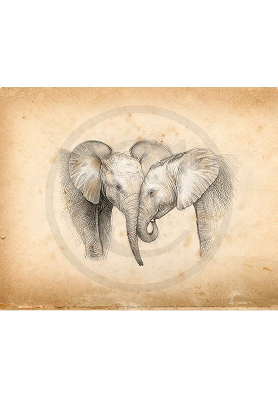 Marcello-art : Faune africaine 325 - Éléphanteaux