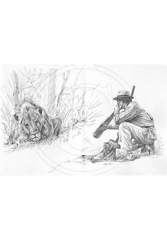 Marcello-art : Faune Africaine 33 - Appel du lion