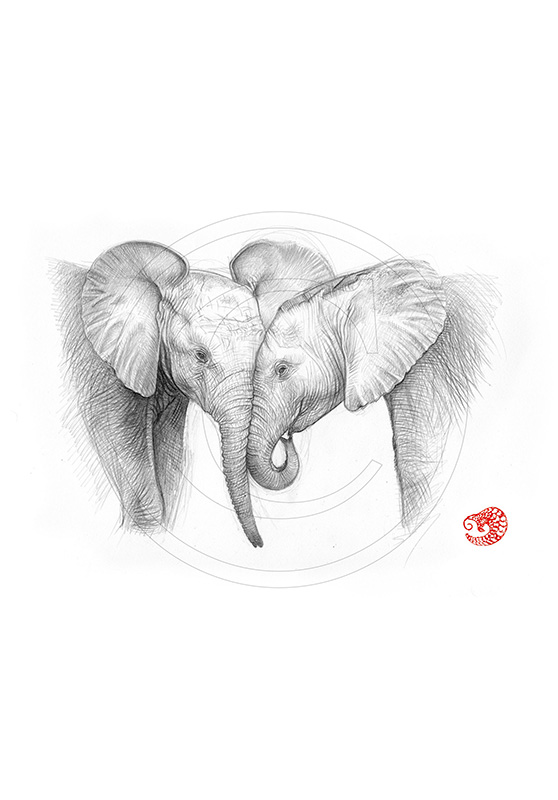 Marcello-art: African Wildlife 325 - Baby elephants