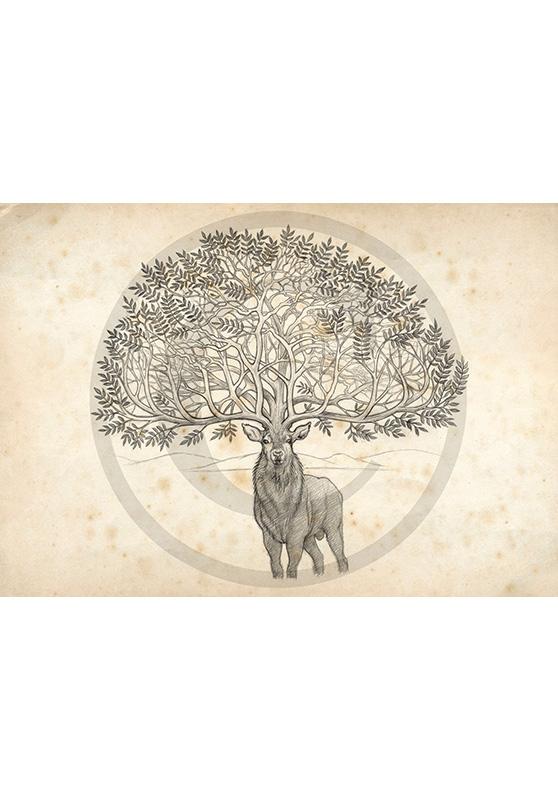 Marcello-art: Fauna temperate zone 48 - Ardennes deer