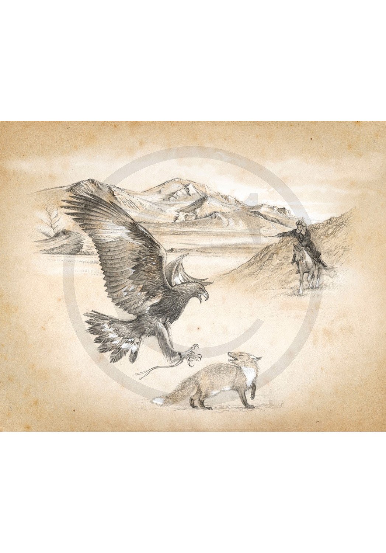 Marcello-art: Fauna temperate zone 205 - Sayat - Hunting eagle