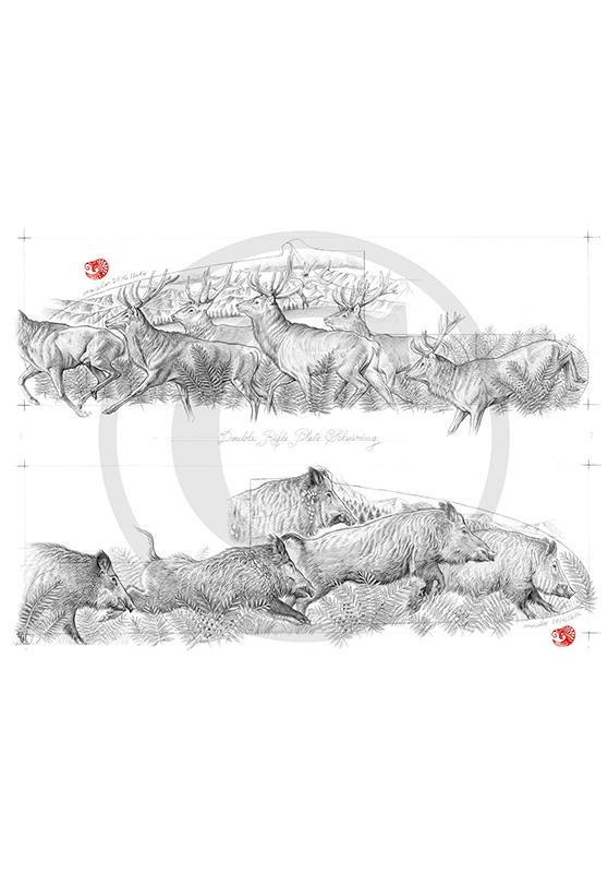 Marcello-art : Faune zones tempérées 359 - Harde de cerfs et sangliers modèle gravure