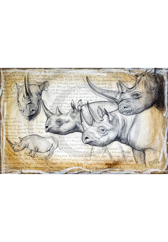 Marcello-art: Originals on canvas 176 - Rhino 03