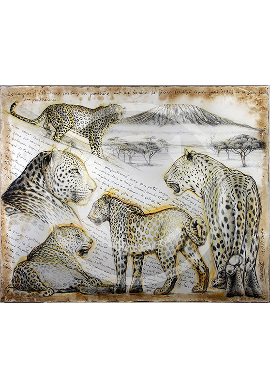 Marcello-art: Originals on canvas 252 - Leopard