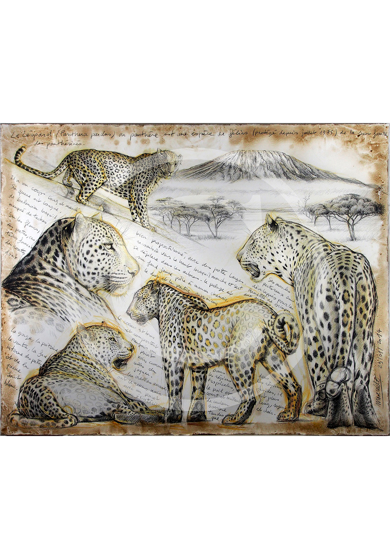 Marcello-art: Originals on canvas 252 - Leopard