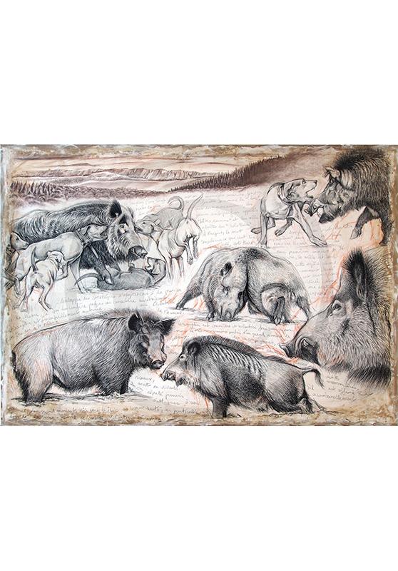Marcello-art : Originaux sur toile 279 - Sanglier au ferme