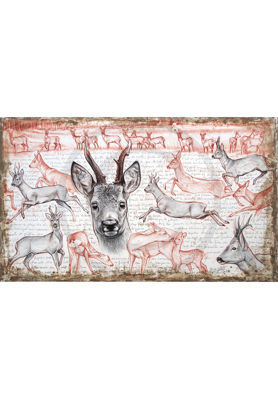 Marcello-art: Originals on canvas 280 - Roe deer