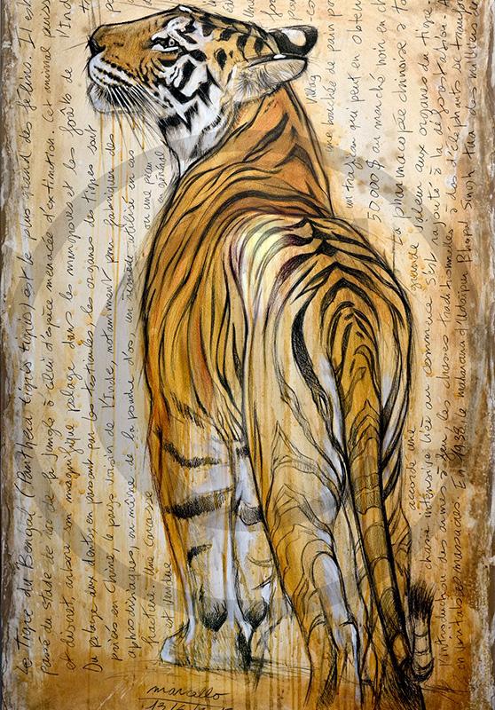 Marcello-art : Originaux sur toile 298 - Tigre du Bengale