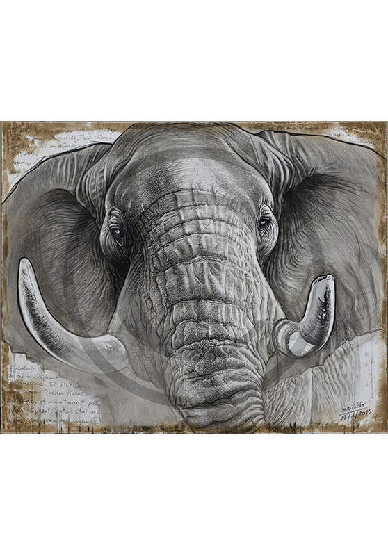 Marcello-art: Originals on canvas 302 - Satao the legend
