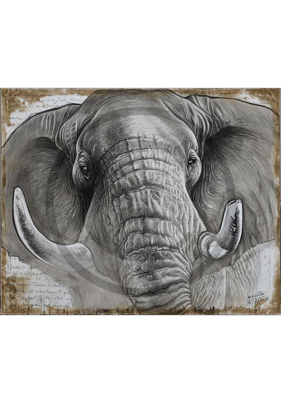 Marcello-art: Originals on canvas 302 - Satao the legend