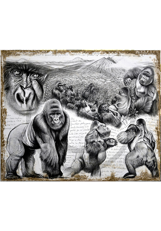 Marcello-art: Originals on canvas 301 - Virunga (Mountain Gorilla)
