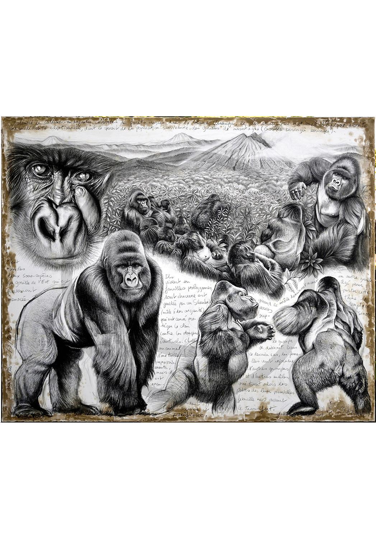 Marcello-art: Originals on canvas 301 - Virunga (Mountain Gorilla)