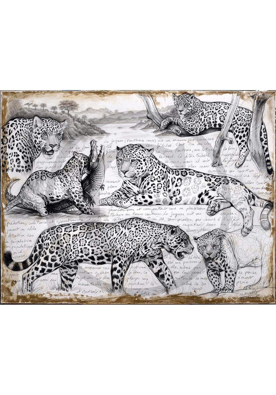 Marcello-art: Originals on canvas 306 - Jaguar