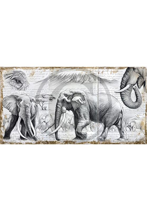 Marcello-art : Originaux sur toile 303 - Satao à l'ombre de l'acacia