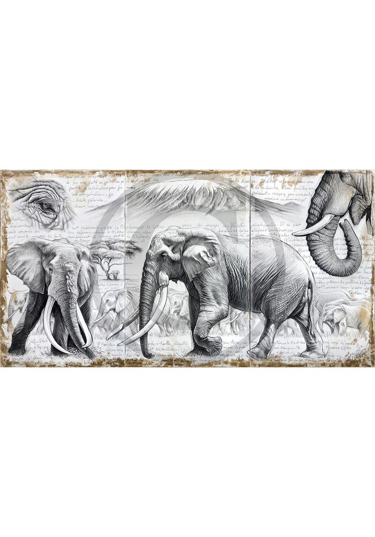 Marcello-art: Originals on canvas 303 - Satao in the shade of the acacia