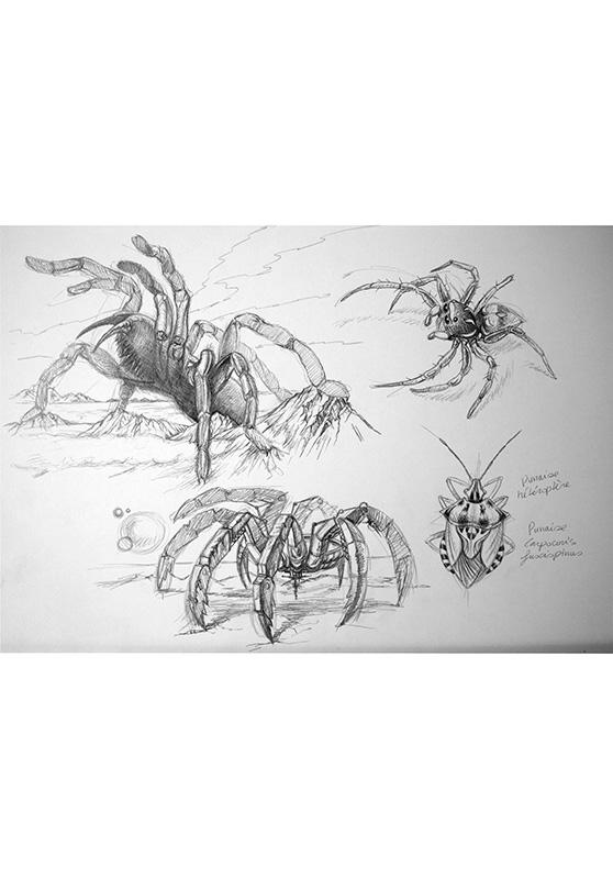 Marcello-art: Entomology 152 - Arachna board 22