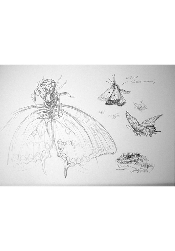 Marcello-art: Entomology 164 - Arachna board 34
