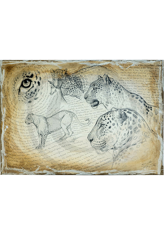 Marcello-art: Originals on canvas 175 - Leopard 08