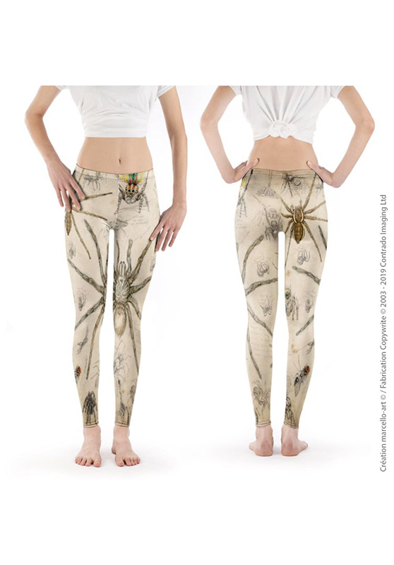 Marcello-art: Legging Legging 82 Arachna