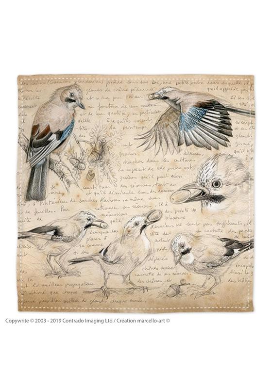 Marcello-art: Bandana Bandana 273 Eurasian Jay