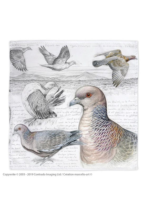 Marcello-art: Bandana Bandana 233 Picazuro Pigeon