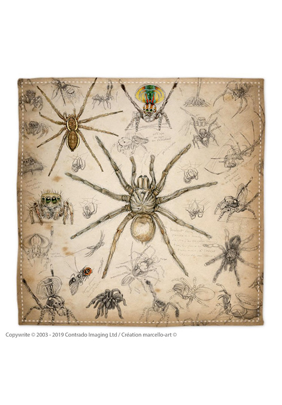 Marcello-art: Bandana Bandana 82 Arachna