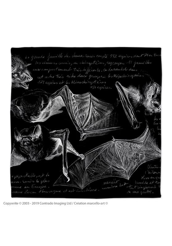 Marcello-art: Bandana Bandana 31 Pipistrelle - black
