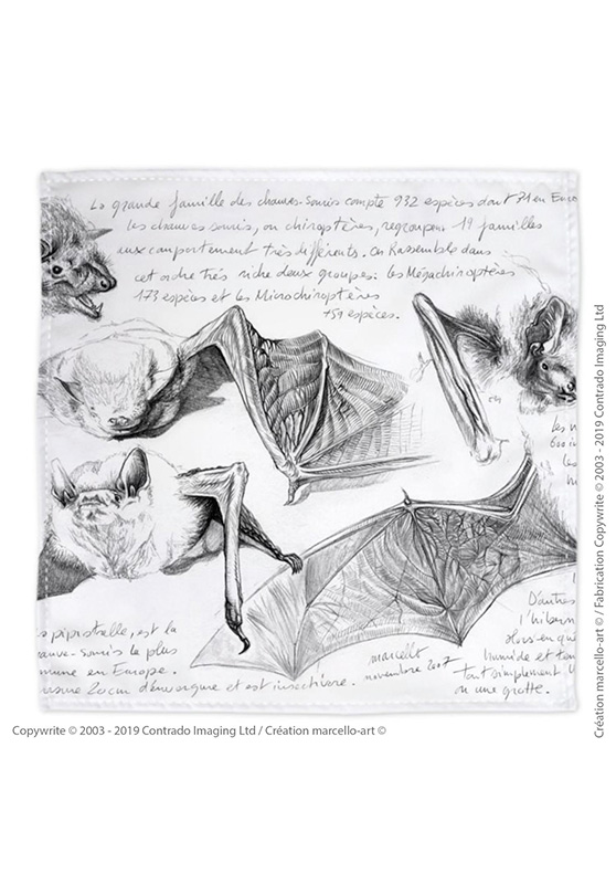 Marcello-art: Bandana Bandana 31 Pipistrelle - white