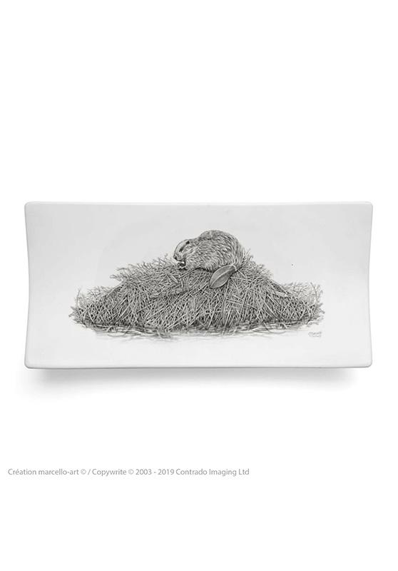 Marcello-art: Rectangular plates Rectangular plate 393 beaver