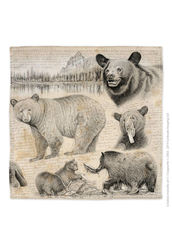 Marcello-art: Bandana Bandana 382 black bear