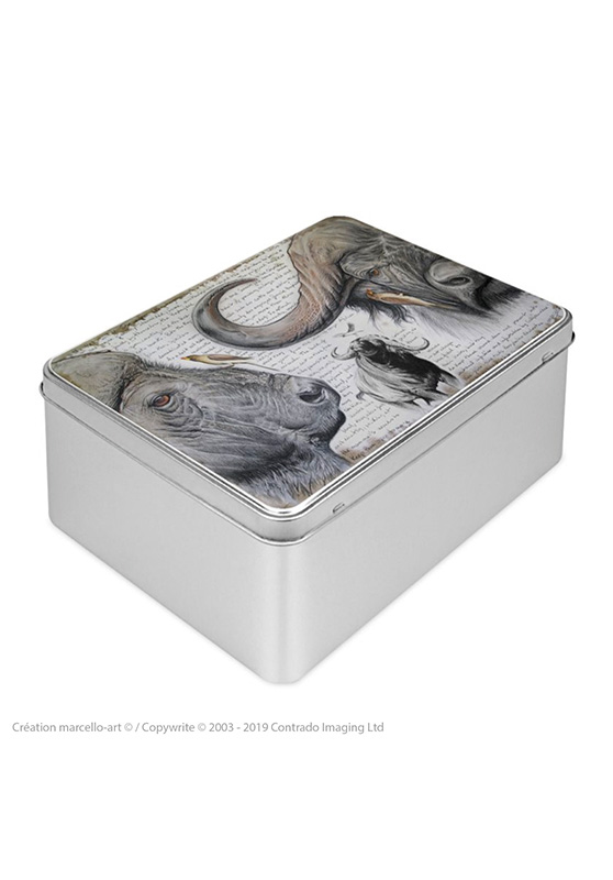 Marcello-art: Rectangular cookie box Rectangular cookie box 227 red-billed Oxpecker