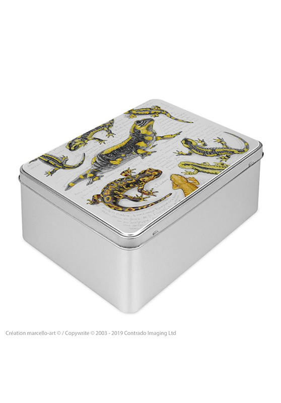 Marcello-art: Rectangular cookie box Rectangular cookie box 383 salamander