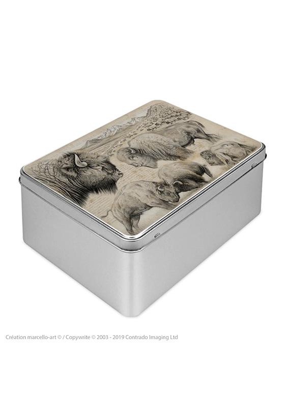 Marcello-art: Rectangular cookie box Rectangular cookie box 390 American buffalo