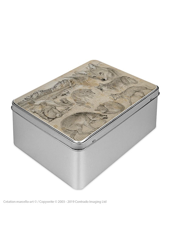 Marcello-art: Rectangular cookie box Rectangular cookie box 391 coyote