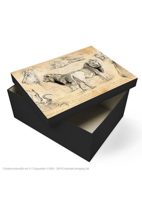 Marcello-art: Decoration accessoiries Souvenir box 54 lions brothers