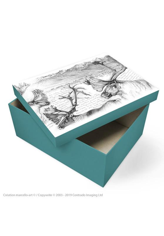 Marcello-art: Decoration accessoiries Souvenir box 190 caribou