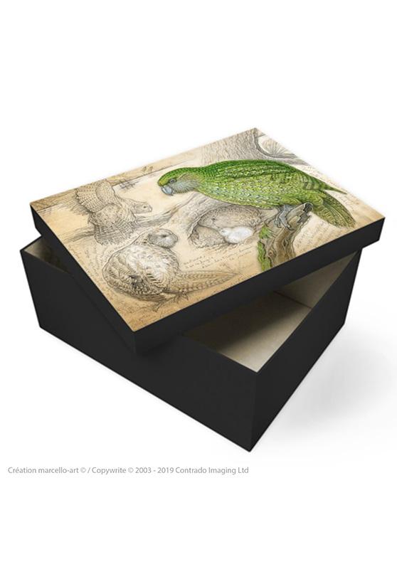 Marcello-art: Decoration accessoiries Souvenir box 192 kakapo