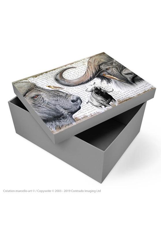 Marcello-art: Decoration accessoiries Souvenir box 227 red-billed Oxpecker