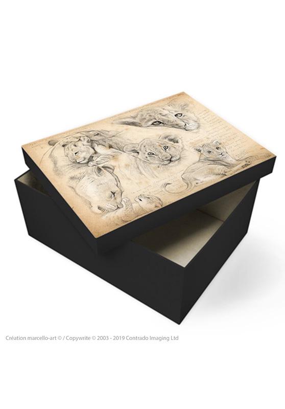 Marcello-art: Decoration accessoiries Souvenir box 330 lion cubs