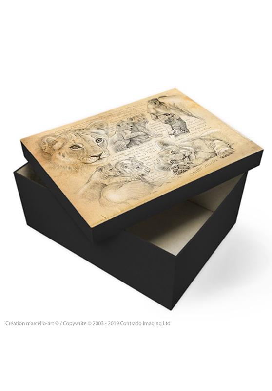 Marcello-art: Decoration accessoiries Souvenir box 331 lion cubs