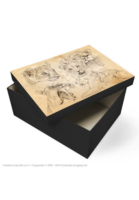 Marcello-art: Decoration accessoiries Souvenir box 335 lion cubs