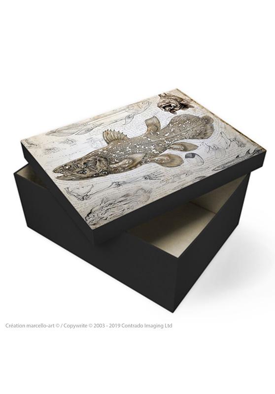 Marcello-art : Accessoires de décoration Boîte à souvenirs 346 Latimeria chalumnae